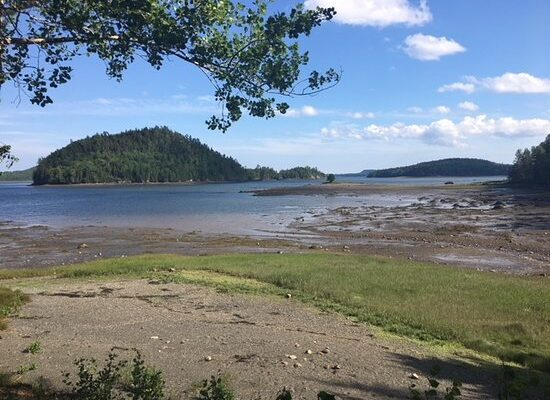 View of Passamaquoddy Bay at Oak Bay , NB along the Coastal Link trail